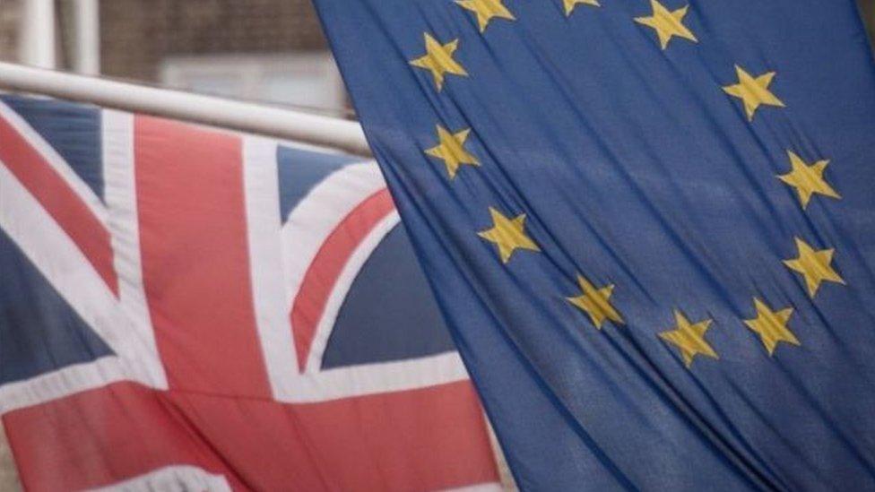 الاتحاد الأوروبي انتقد قانون حماية السوق الداخلية الذي أقره البرلمان البريطاني