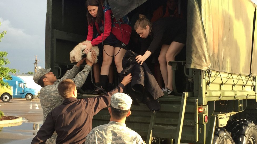 Women on the back of a truck handing a dog to a soldier, 14 August 2016
