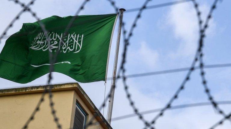 Saudi Arabia 'tortured female activists', charities say