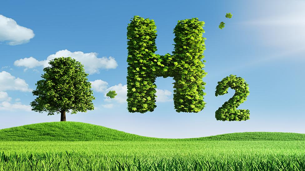 Un árbol y el símbolo H2