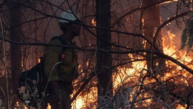 Oregon'daki orman yangınları
