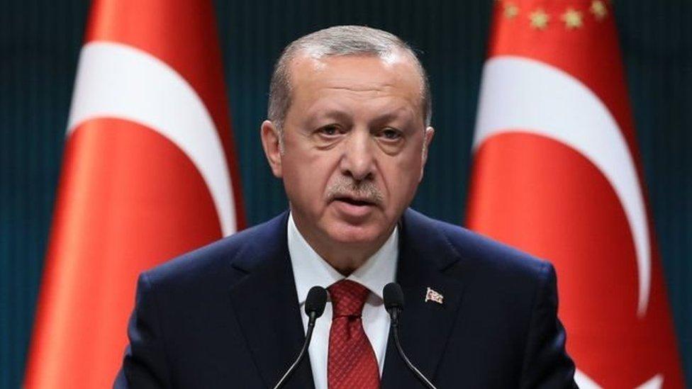 Дострокові вибори в Туреччині: чому Ердоган поспішає?