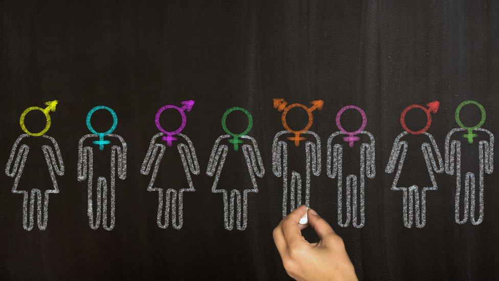 Pizarra con representación de distintos sexos: masculino, femenino e intersexual.