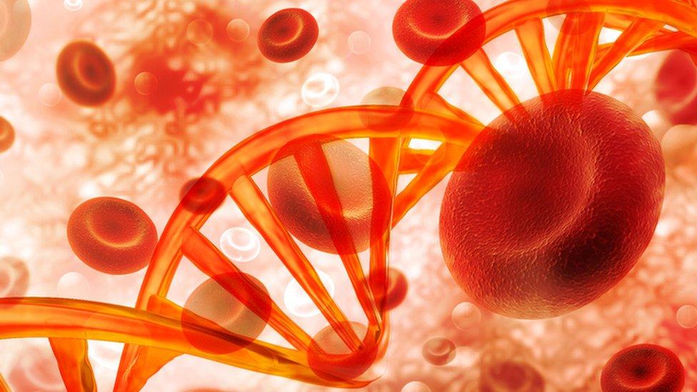 Ilustración de células sanguíneas y hebras de ADN.