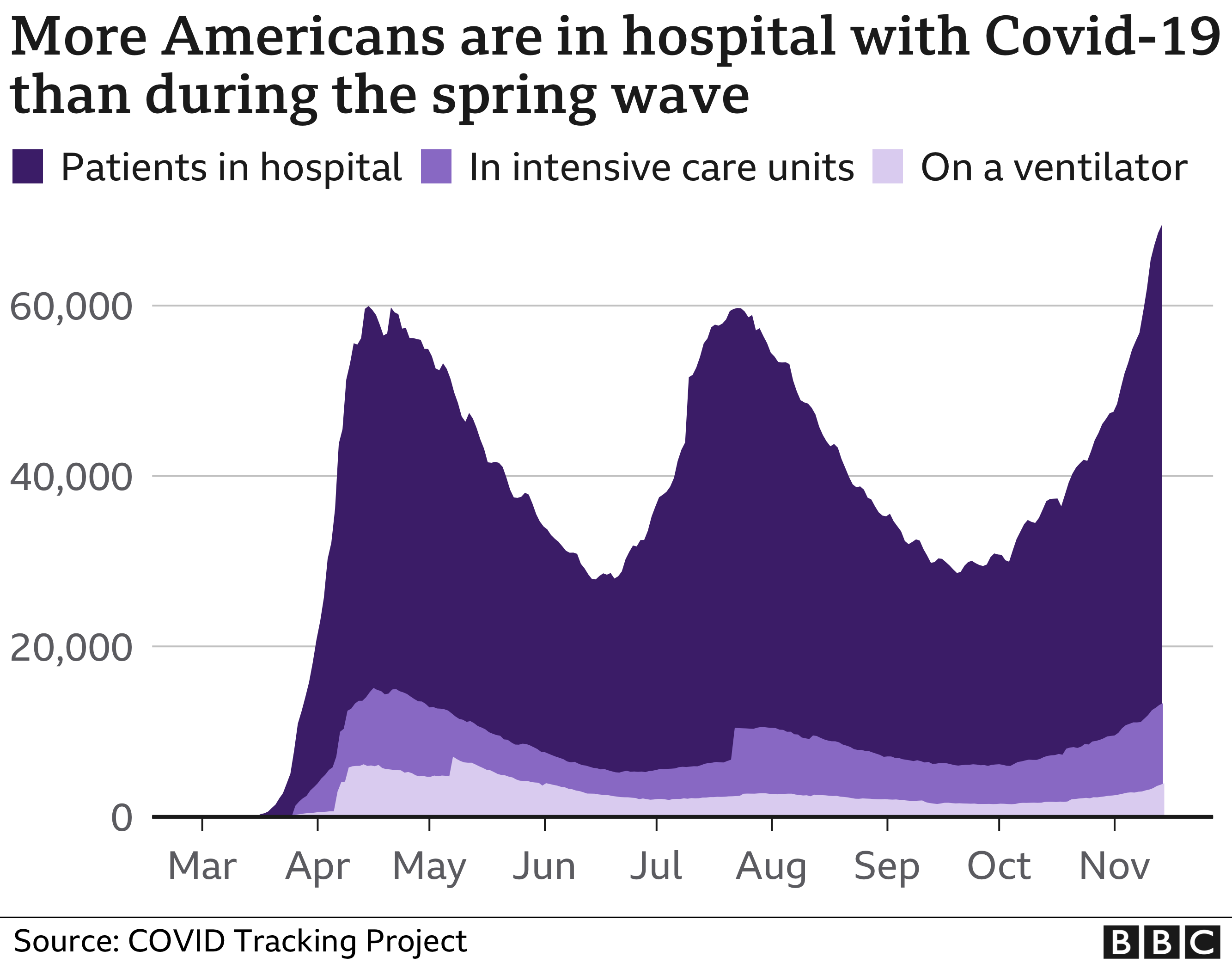 Chart showing the number of Covid-19 patients in US hospitals since the start of the pandemic