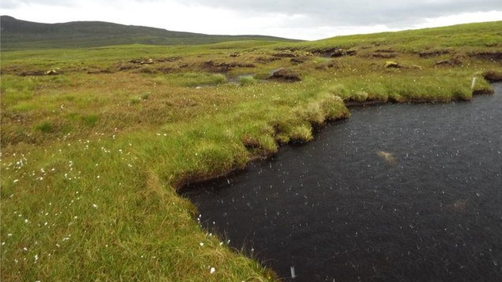 Part of A'Mhoine peninsula in Sutherland