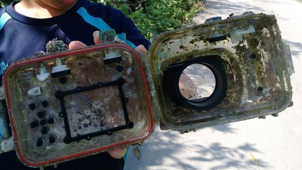 Camera case overgrown with barnacles