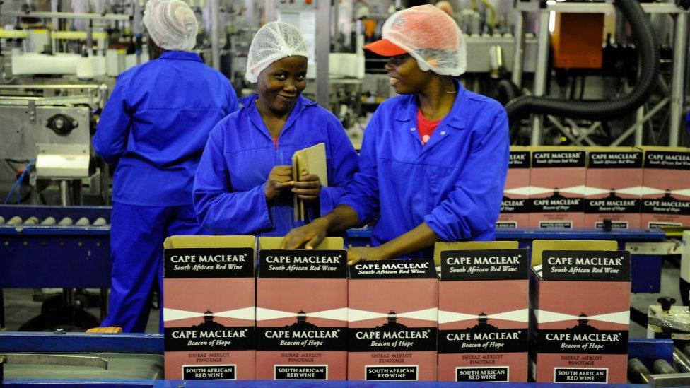 Perempuan Afrika Selatan di pabrik anggur