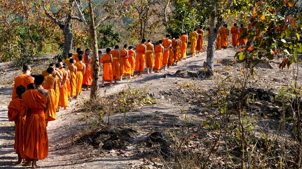 A row of monks in the forest