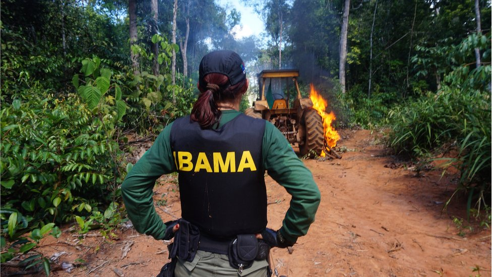 An Ibama operation against illegal deforestation in Mato Grosso, Brazil (July 2015)