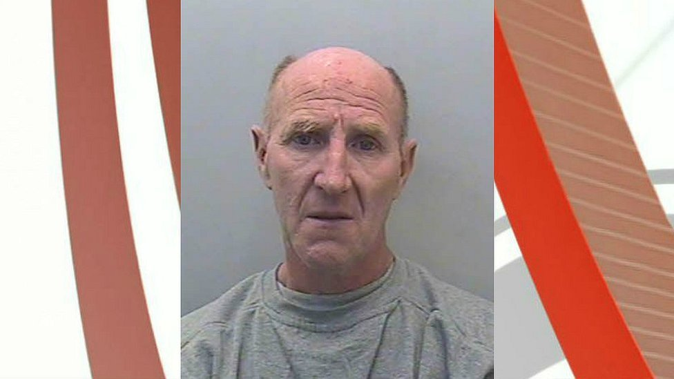 Man jailed for throwing a hamster and cage at his wife