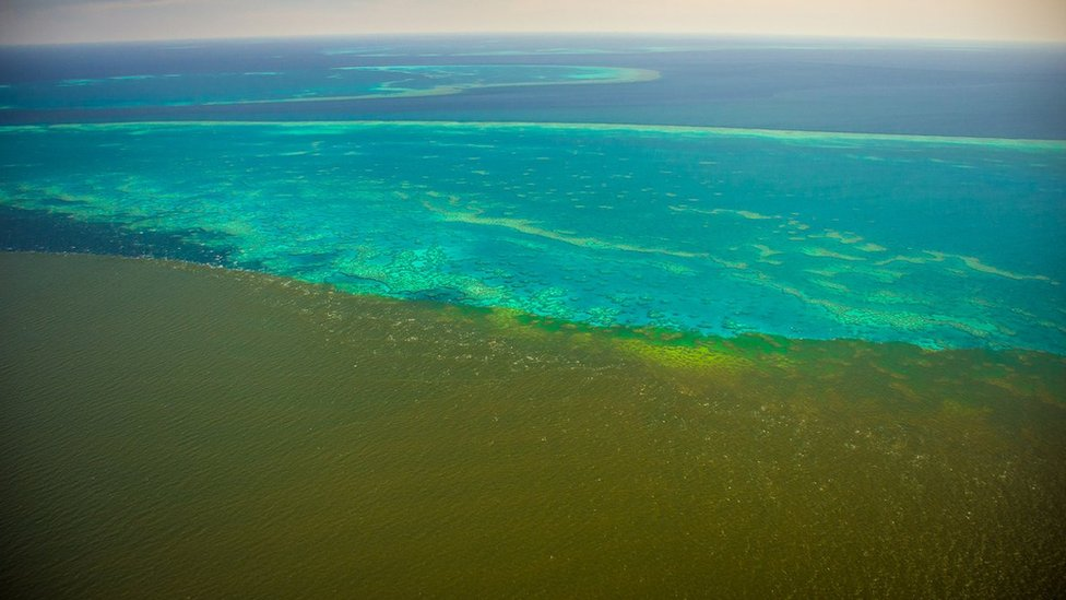Fine sediment plumes from the Burdekin River start hit Old Reef