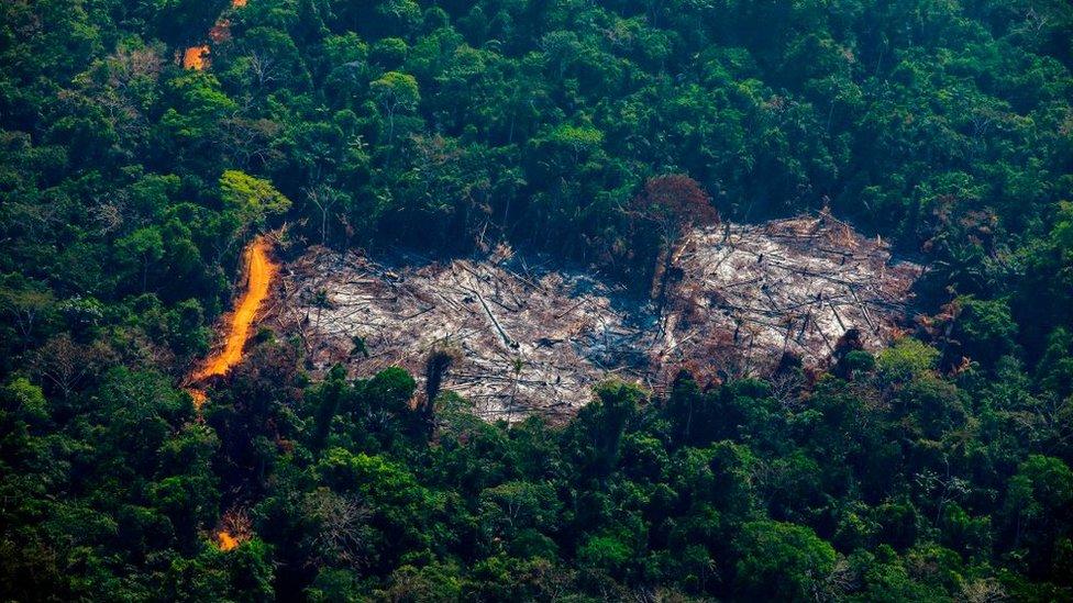 Una parte deforestada de la selva Amazónica de Brasil.