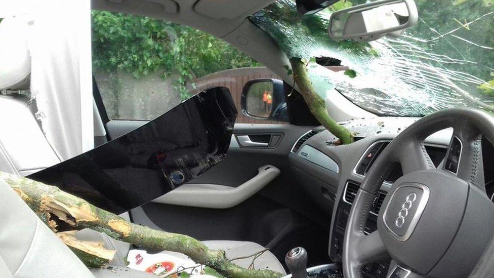 Storm Ali: Tree 'came through our car'