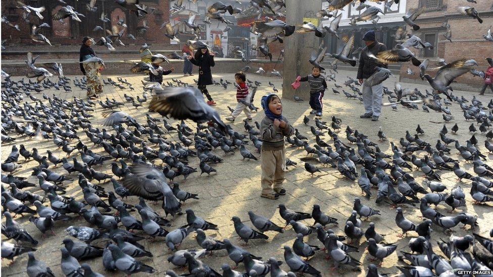 Nepalese children feed pigeons in Durbar Square in Kathmandu