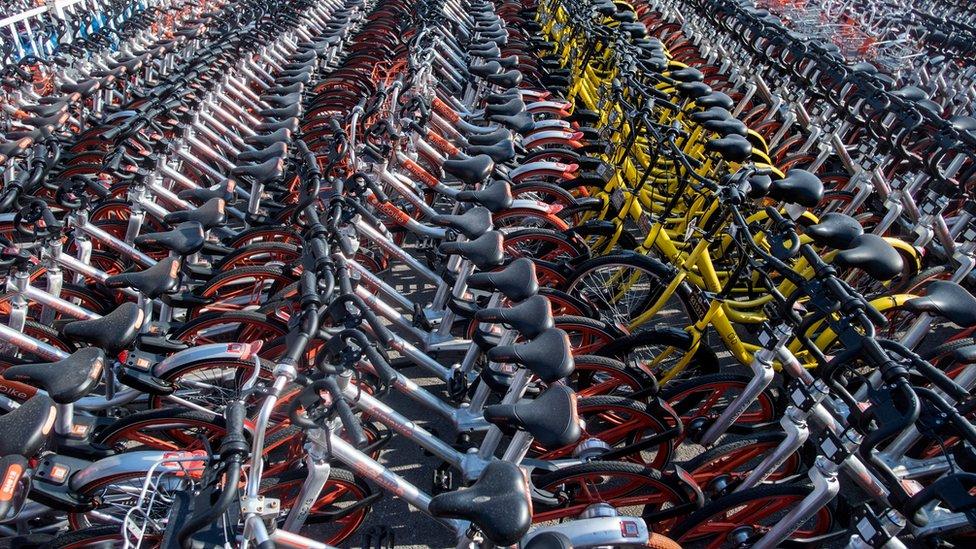 Rows of bikes in China's bike sharing scheme