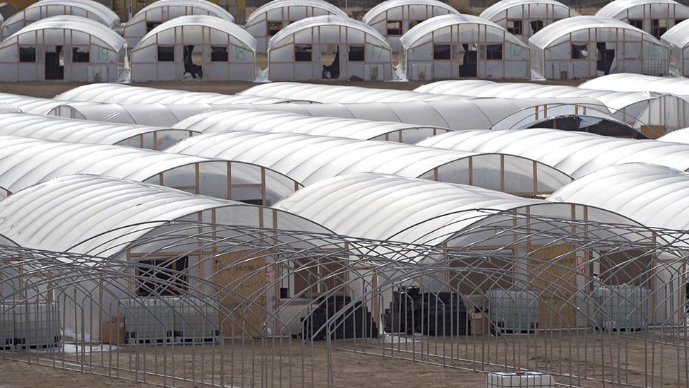 Dozens of hoop houses were built overnight last summer in Shiprock, New Mexico