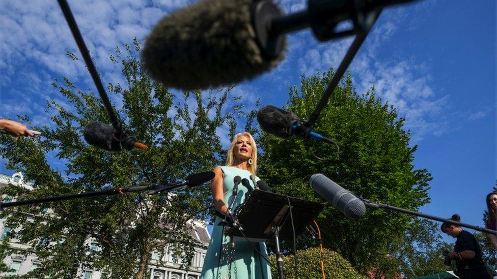 Kellyanne Conway ante los micrófonos
