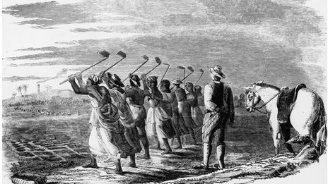 Slave workers 'cane hoeling' on a sugar plantation in the West Indies, 1849