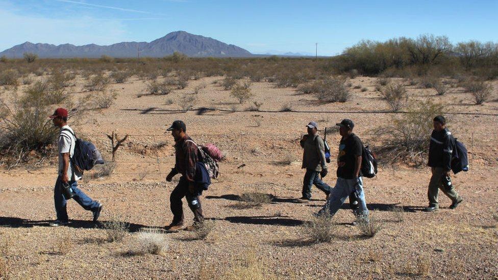 Migrantes caminan en el desierto