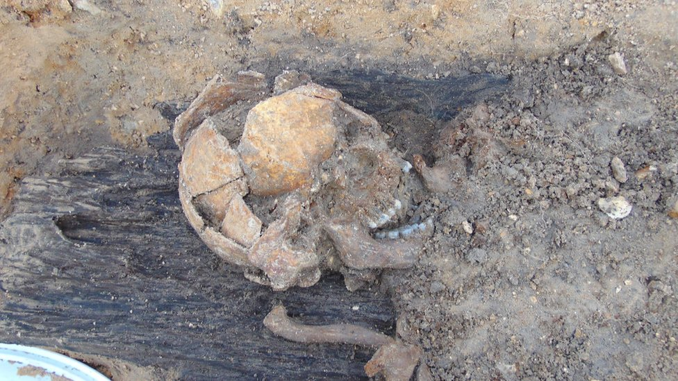 Anglo-Saxon skull at Great Ryburgh in Norfolk