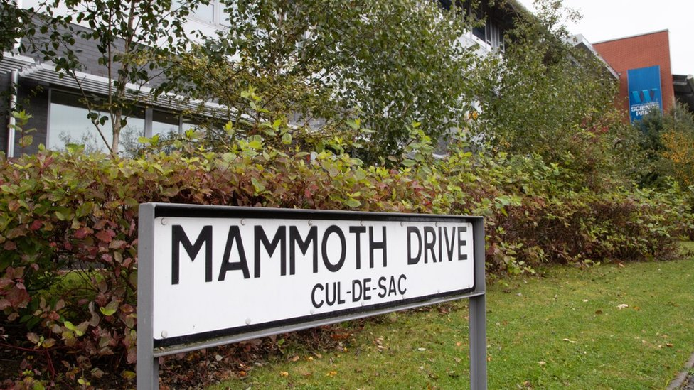 A street sign showing the name Mammoth Drive