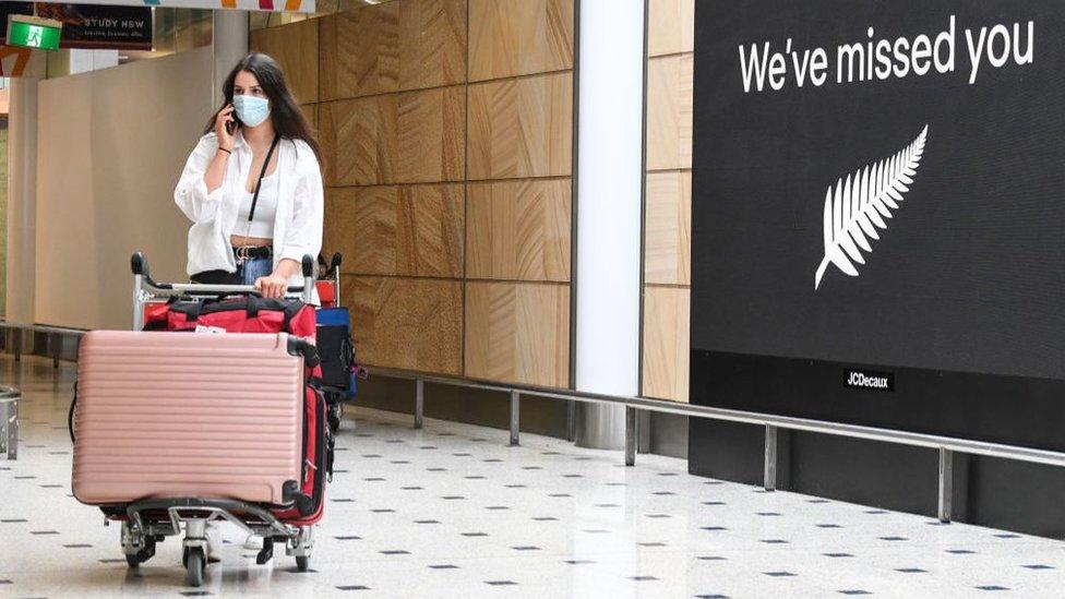 疫情下跨境旅行成難點。