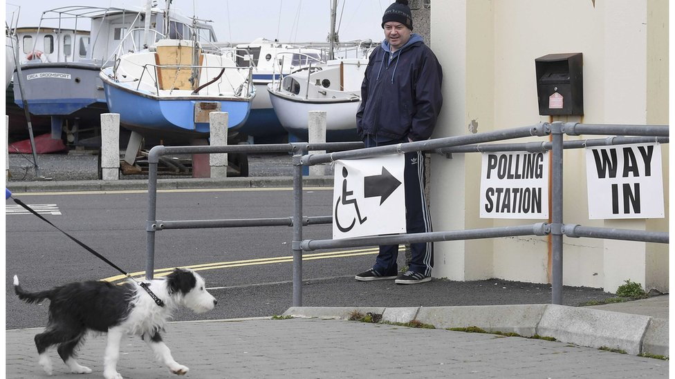 A dog makes its way to a boathouse being used as a polling station at Groomsport