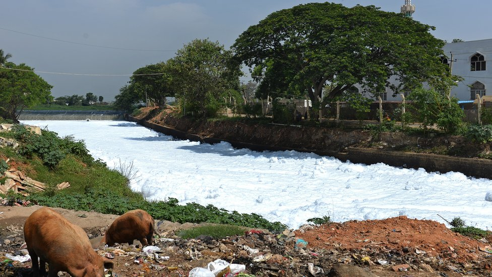 A canal which once carried water from Bellandur Lake to Varthur Lake is filled with froth emanating from sewage in east Bangalore on May 1, 2015.
