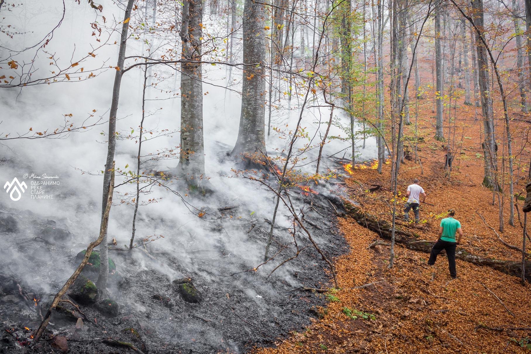 stara planina požar