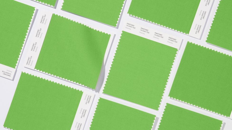 greenery colour swatch