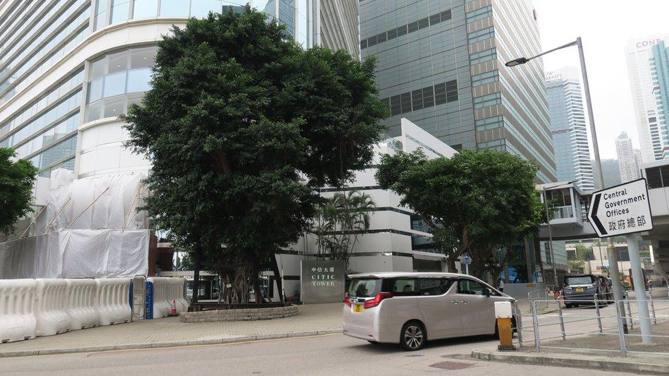 香港特區政府總部建築群與中信大廈外保留自添馬艦海軍船塢的細葉榕(左)(14/4/2021)