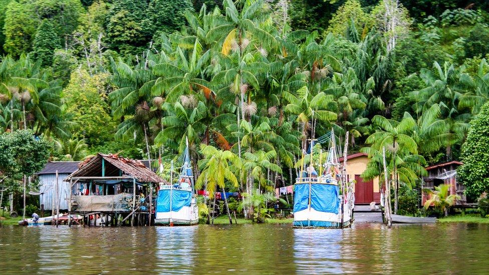 La ocupación poblacional de la Guayana Francesa se ha centrado mayoritariamente en la zona costera.