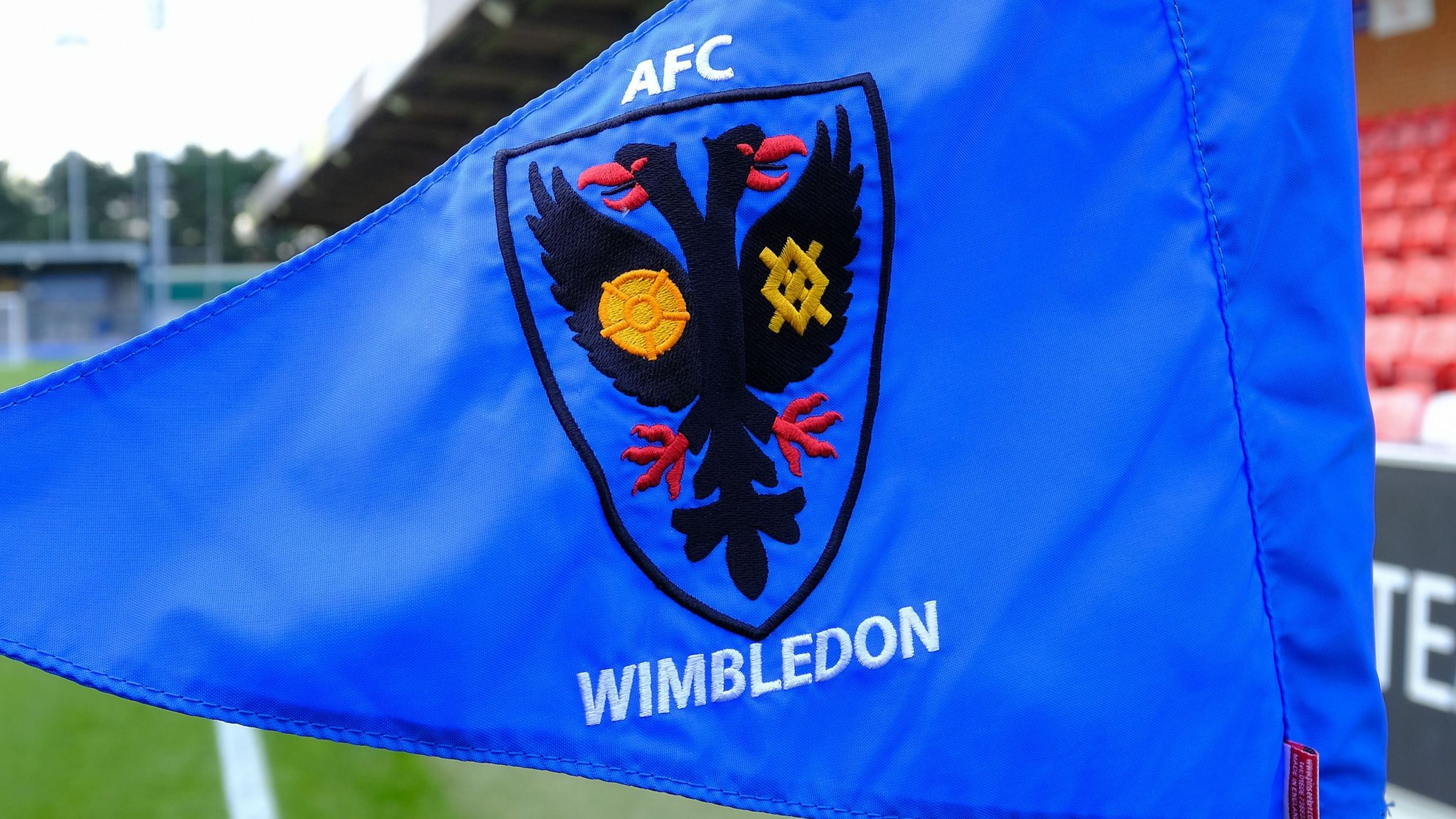 AFC Wimbledon: 80 applications for managerial vacancy