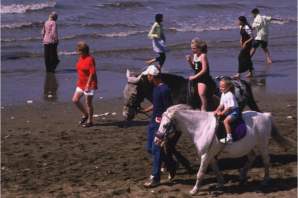 ponies on the beach