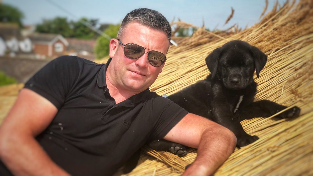 Norfolk thatcher's puppy Shuck has roof work licked