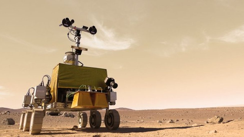 Bridget the rover