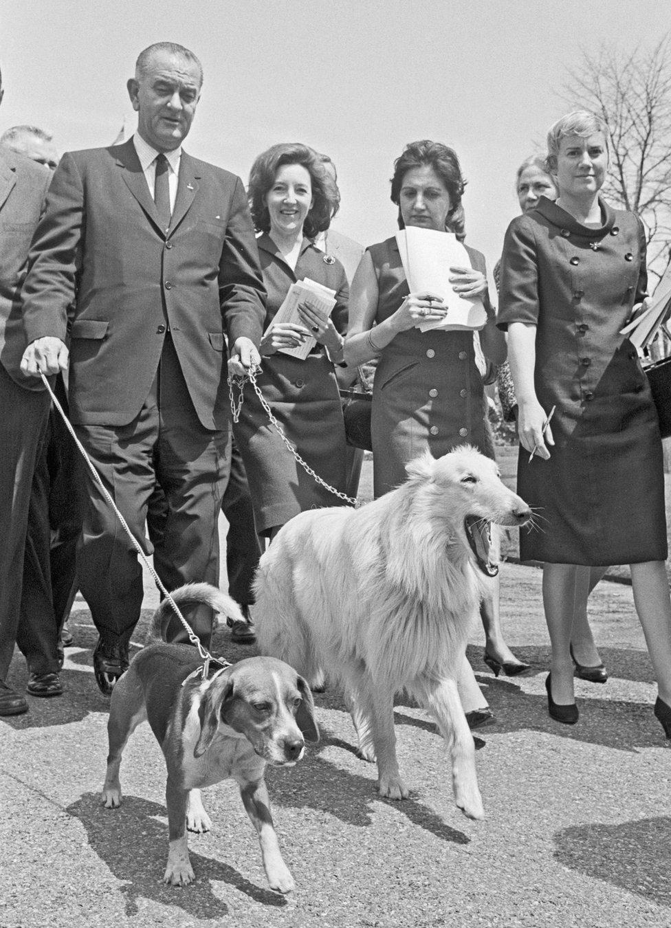 الرئيس جونسون يمشي كلبيه: هو (في الأمام على اليسار) وبلانكو (يمين الأمام) إلى جانب الصحفيين في أراضي البيت الأبيض في عام 1965.