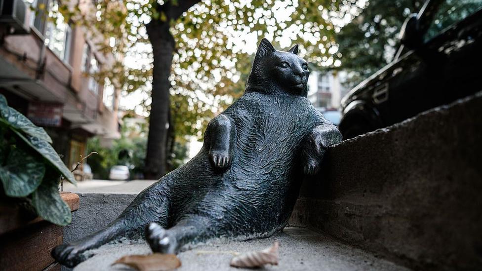 Statua mačke u Istanbulu