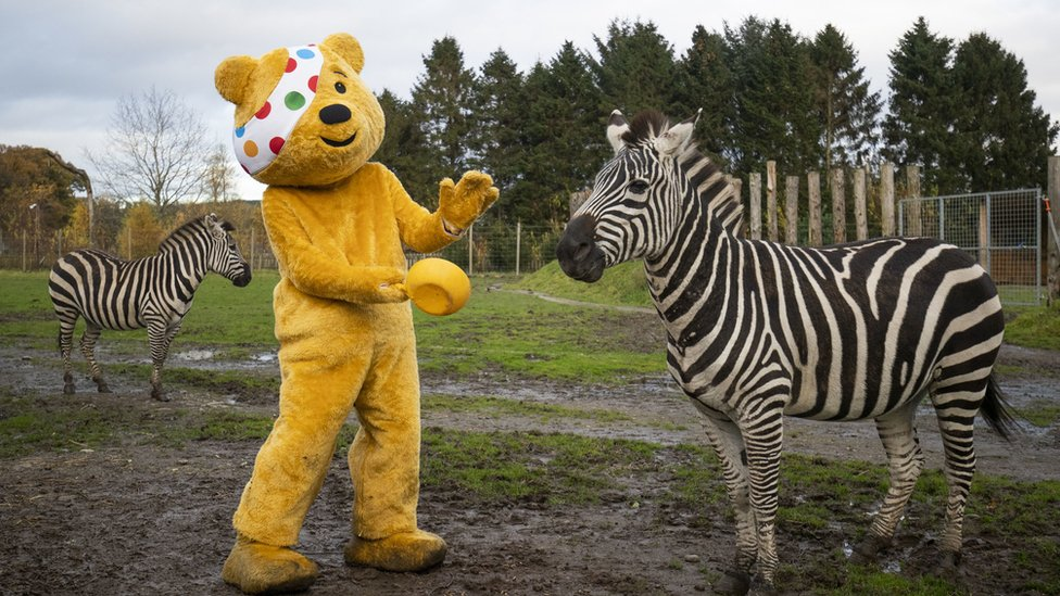 Children in Need: Stars gather for audience-free fundraiser thumbnail