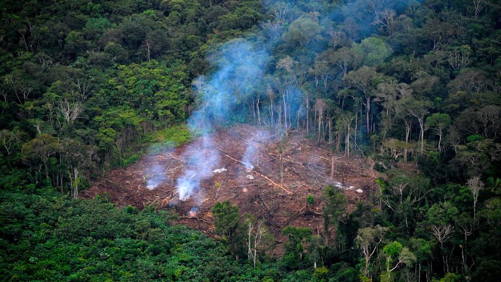 Desforestación ilegal en el Parque Nacional La Macarena, en el Departamento del Meta, en septiembre de 2020