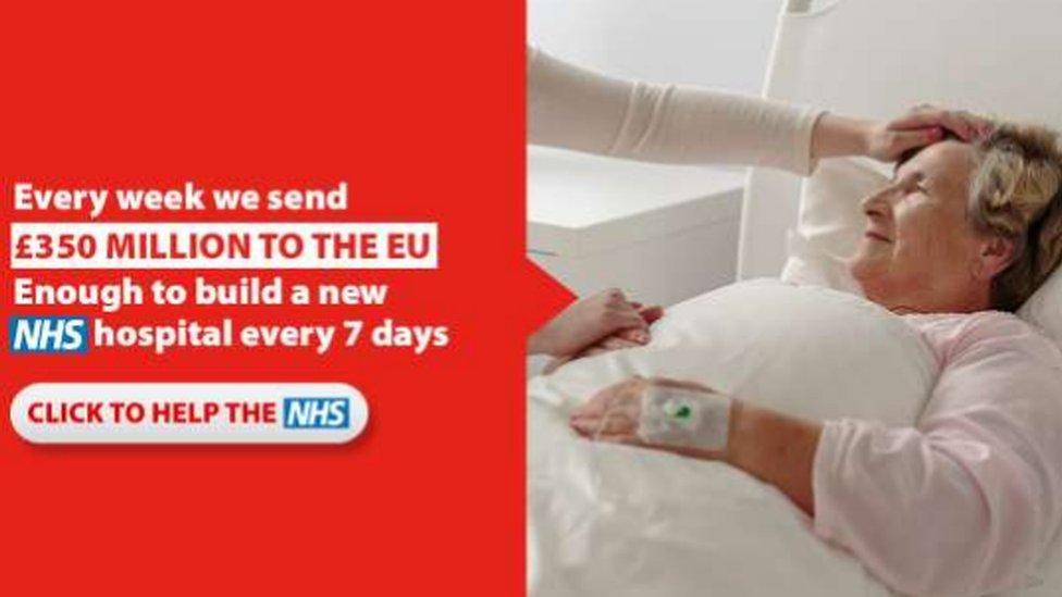 Vote Leave ad