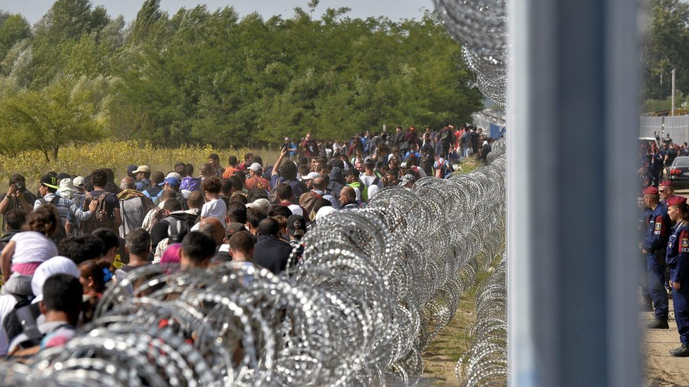 Migrants walk along the border fence between in Horgos, Serbia, 15 September 2015