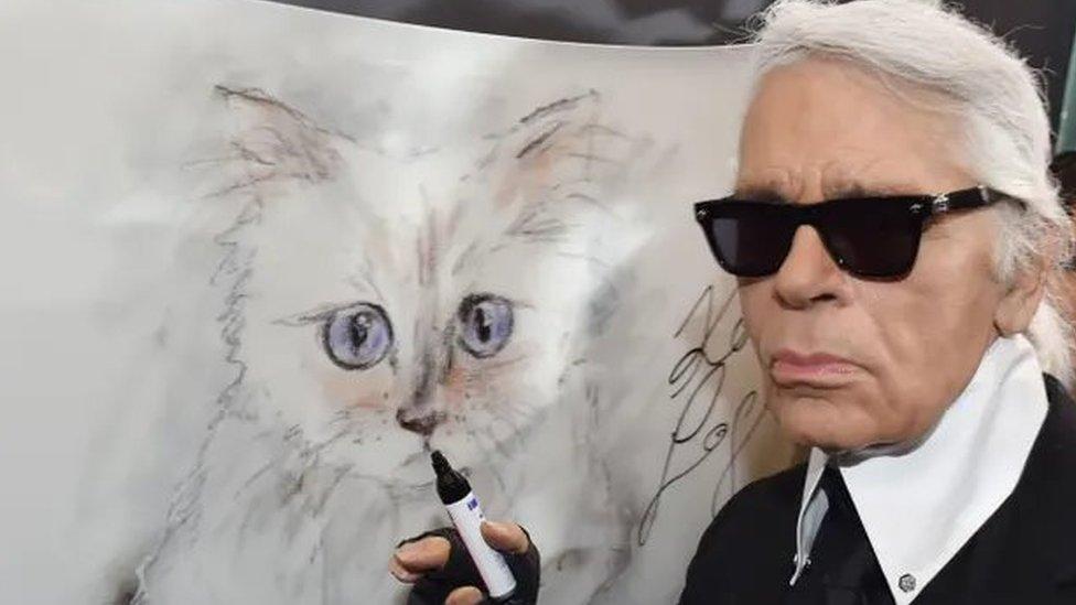 قطة لاغرفيلد ترث الملايين