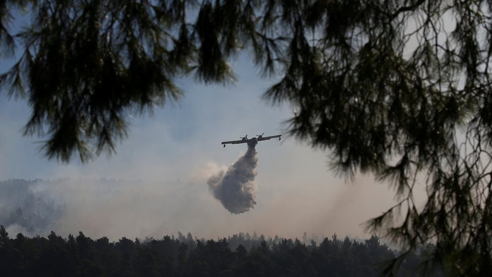 Avion nadleće požar, ispuštajući vodu