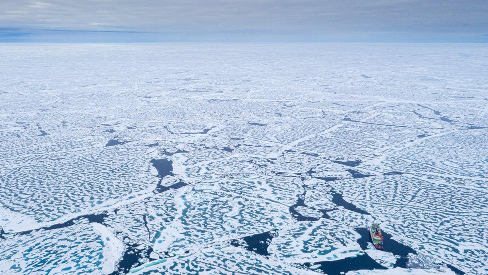 Arctic sea-ice