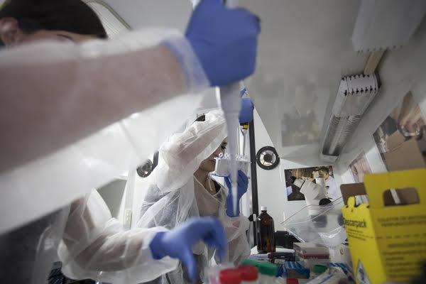 Cientista Marta Giovanetti trabalhando no laboratório
