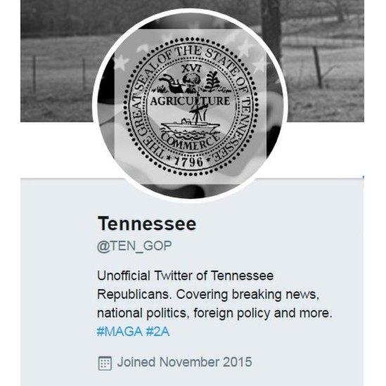 Screen grab of @TEN_GOP's twitter account