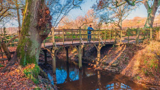 El puente Pooh Sticks, el en bosque de Ashdown