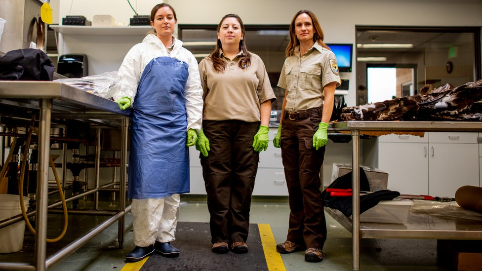 Laura Mallory, Liza Roman y Sarah Metzer usan guantes brillantes mientras están parados en el laboratorio